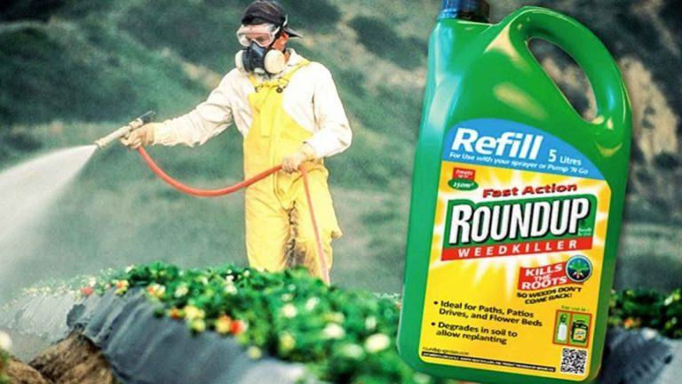 CALIFORNIA REGULATORS PUT GLYPHOSATE ON CANCEROUS CHEMICALS LIST