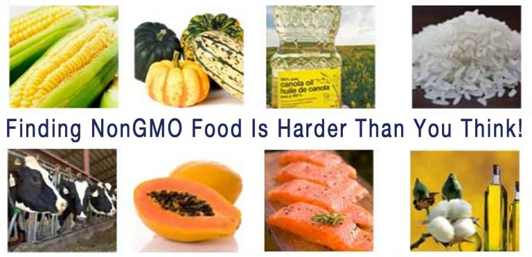 WHY LABELING GMO FOODS MATTER